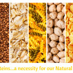 Proteins…a necessity for our Natural hair