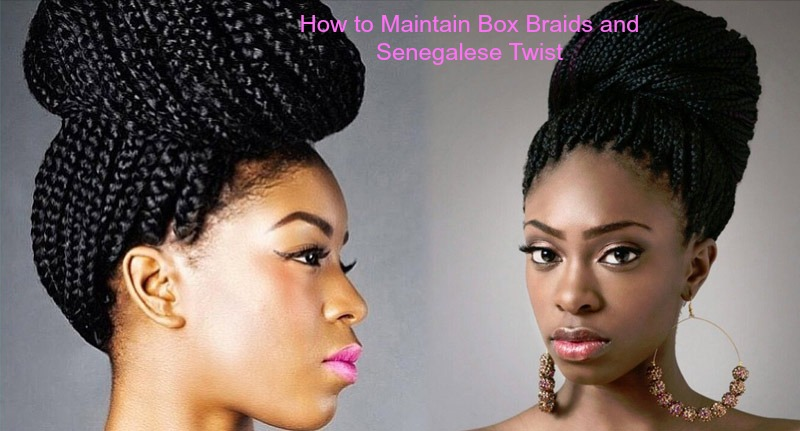 How To Maintain Box Braids And Senegalese Twist My Hair